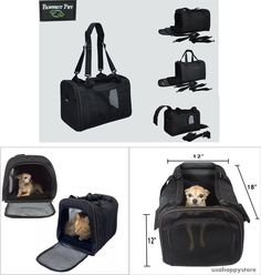 Small Pet Carrier Airline Approved Dog Cat Under Seat Travel Bag Shoulder Strap #PawfectPet