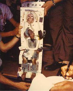 """""""O Grito do Bicho"""": PETA em campanha contra envio de animais ao espaço..."""