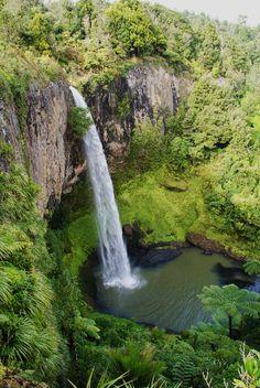 Bridal Veil Falls near Raglan New Zealand Claire Lambert - Photographer ✔️