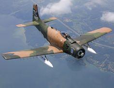 A Douglas A-1H Skyraider.