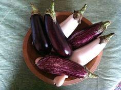 . British English Words, Color Box, Colour, Colors Name In English, Eggplants, Eggplant Purple, Color Names, Violets, Dark Purple
