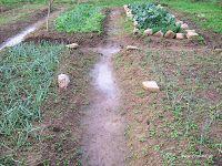 Δεκέμβριος στο αγρόκτημα Athens, Stepping Stones, Country Roads, Gardening, Outdoor Decor, Tape, Stair Risers, Lawn And Garden, Athens Greece