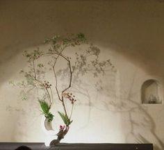 「 『二階堂明弘 展』2012年6月7日(木)~12日(火) 」の画像|『うつわ謙心』日記|Ameba (アメーバ)