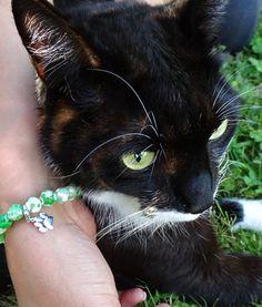 goodydoo - I LOVE ANIMALS COLLECTION - Love Nature Armband mit Pfötchen Charm - Grün-weiße Perlen aus Quarz, Inklusive Pfötchen Charm aus Sterling Silber ...