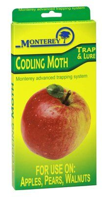 NEW Monterey Codling Moth 2 complete traps 2 lures apples pears walnuts Yard Waste, Apple Pear, Garden Pests, How To Get Rid, Pest Control, Pears, Apples, Gardening, Garten