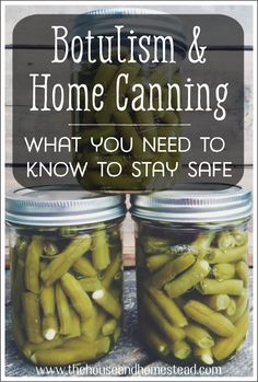 Botulism is a serious food-borne illness that can develop in home canned foods. Learn what you need to know to stay safe while home canning and keep your family safe from the threat of botulism. Canning Tips, Home Canning, Canning Recipes, Canning Food Preservation, Preserving Food, Canned Meat, Canned Foods, Ball Canning Recipe, Low Acid Recipes