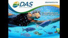 Este 13 DE JULIO deja que LA GLORIA VIVA EN TU CORAZÓN e inscríbete en la 6a edición del Triatlón mas ecológico de México obteniendo POR TIEMPO LIMITADO sin costo adicional UNA PLAYERA EXTRA PARA TU ACOMPAÑANTE !!