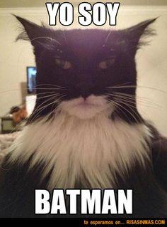 yo soy batman jajaj ♥