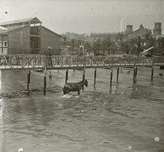 Playa del Postiguet. Al fondo el balneario La Esperanza Año: 1903. Archivo Ayuntamiento Colección: RAMÓN VIDAL IRLES