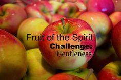 Fruit of the Spirit Challenge: Gentleness