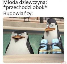 Very Funny Memes, Wtf Funny, Hilarious, Polish Memes, Funny Mems, Offensive Memes, Couple Goals, Haha, Humor