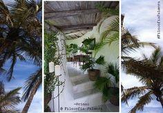 «Mi hogar está donde tú estés» #Reinos #FilosofiaPalmera