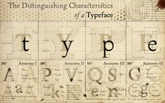 Cool typeface characteristics poster
