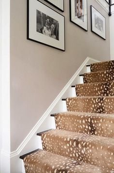 Animal print carpeted stairs so velour like! Makes the foyer rich The Zhush: Our New Domaine