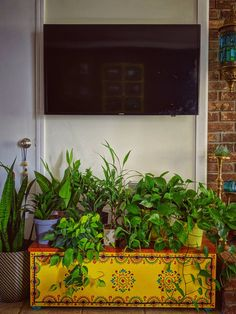 Living Room Plants Decor, House Plants Decor, Joanna Gaines, Home Decor Furniture, Diy Home Decor, Indian Room Decor, Ethnic Home Decor, Live Edge Console Table, Bed Cover Design