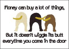 Money can buy a lot of things but it doesnt wiggles its butt when you walk in…