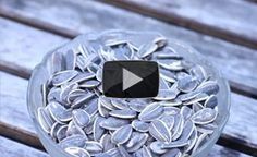 How Do I Germinate Sunflower Seeds?: Planting the Seed - Off The Grid News