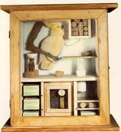 joseph cornell boxes - Bing Images  Cockatoo and corks