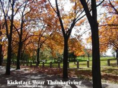 A simple way to kickstart your thanksgiving: 10 Bible verses about giving thanks!