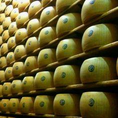 Parmesan Cheese Wheels