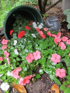 flower pot on its side - Google Search