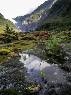 Glacier Terminal Face, New Zealand | Bel Around The World