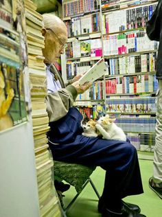 Gatos en una librería de Hong Kong