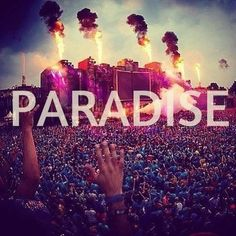 <3 I wanna live in paradise This is a cool Pin but OMG check this out #EDM www.soundcloud.com/viralanimal