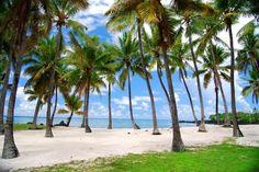 Você já ouviu falar em Comores? Provavelmente não... A pequena nação insular…