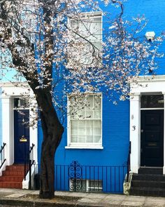 "Curbed on Instagram  ""Who said blue was a sad color  💙🦋💠 (📷   ritafarhinoirot)"" 8c58ce97f"