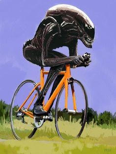 This is what my wife sees when I have my aero helmet on.