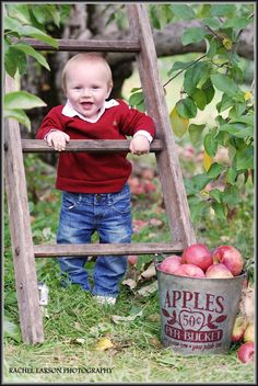 Children's Photography - Baby / Apple Picking / Rachel Larson Photography