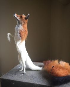 Start of a new fox 🦊💕. I'll be indulging in fox making next week before I concentrate on my next group of dog portraits. Two single foxes planned next and a special double sculpture which might be invited to a wedding! Needle Felted Animals, Felt Animals, Josi, Felt Fox, Needle Felting Tutorials, Wet Felting, Felt Dolls, Dog Portraits, Felt Crafts