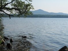 A view of the water at Meacham Lake Campground - NYSDEC Campgrounds