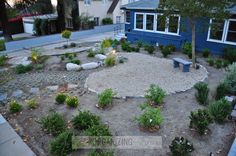 Front yard makeover - from grass to gorgeous... a native, drought-tolerant front yard and landscape by Becky of Organizing Made Fun. || @organizemadefun