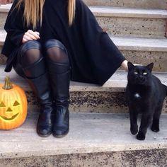 I feel autumn getting closer each day...  . . . #autumn #fall #halloween  #halloweentime #blackcat #catlover #catlady #catlove #pumpkin #jackolantern  #creepy #black #kitty #autumnmood #halloweenlover #GlamourGhoul #HorrorGhoul