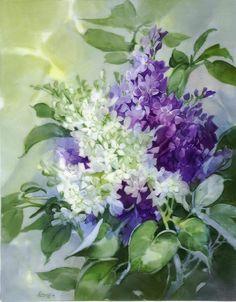 Lilacs.JPG 600×770 píxeles