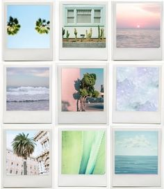 Polaroid of palm trees, the ocean, blue waters, purple/pink skies, cactus's.. of nature.