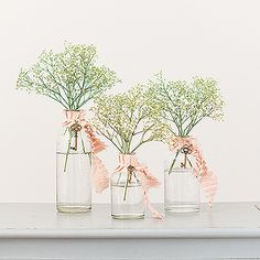 Decorating Glass Bottle Set - Clear
