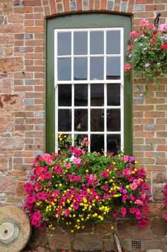 Stunning Flower Box Ideas & Arrangements A beautiful window box filled with small yellow flowers, pink petunias, and light pink geraniums.A beautiful window box filled with small yellow flowers, pink petunias, and light pink geraniums. Window Box Plants, Window Box Flowers, Balcony Flowers, Window Planter Boxes, Flower Boxes, Flower Ideas, Window Boxes Summer, Planters Flowers, Fall Planters