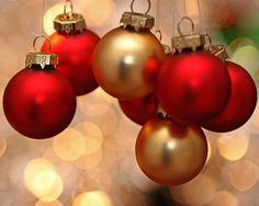 Vous cherchez un endroit pour célébrer Noël ou le party du Jour de l'An en…