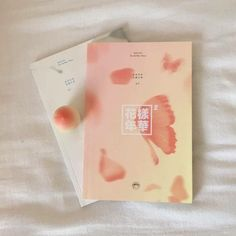Peach Aesthetic, Kpop Aesthetic, Army Room Decor, Just Dream, Kpop Merch, Just Peachy, Album Book, Pretty Pastel, Aesthetic Pictures