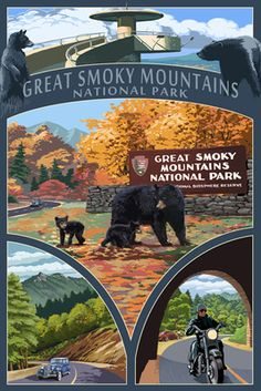 Montage - Great Smoky Mountains National Park, TN - Lantern Press Poster -- I especially like postcards published by this company.