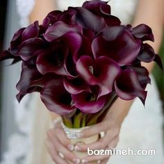 Romantic Gifts For Wife, Ramadan Gifts, Deep Purple, Bridal Makeup, Wedding Inspiration, Rose, Flowers, Plants, Bouquets