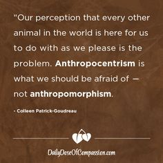 """""""Our perception that every other animal in the world is here for us to do with as we please is the problem. Anthropocentrism is what we should be afraid of -- not anthropomorphism. Like Animals, Animals Of The World, Animal Rights Movement, Witty Remarks, Vegan Quotes, Why Vegan, Human Emotions, Going Vegan, Perception"""