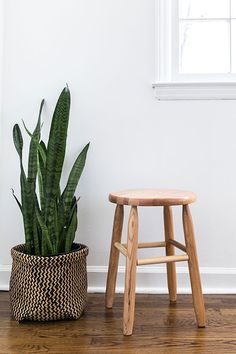 The Dixie Seating Co. Garland Round 18 in. Backless Stool brings a simple and classic style to your home. This stool is made from solid ash hardwood. Eames Chairs, Room Chairs, Ikea Chairs, Bar Chairs, Dining Chairs, Wood Furniture, Living Room Furniture, Painting Furniture, Furniture Layout