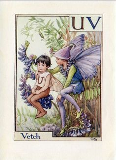 Wicke Alphabet Buchstaben U V Flower Fairy von FlowerFairyPrints