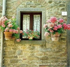 instead of a window box...