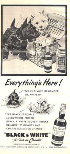 Black & White - Everything's Here