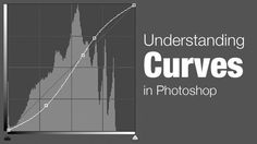 Powerful tool & nowhere near as scary as they're made out to be. Understanding the Curves Command in Photoshop Lightroom Tutorial, Photoshop Tips, Photoshop Elements, Learn Photoshop, Photoshop Photography, Photography Tutorials, Photography Photos, Product Photography, Photo Tips